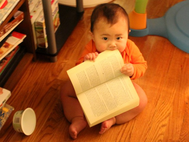 Baby Chewing on Paperback Books