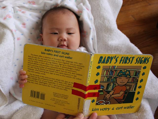Baby's First Signs by Kim Votry and Curt Waller