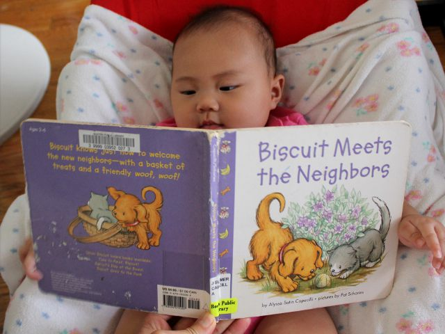 Biscuit Meets the Neighbors by Alyssa Satin Capucilli