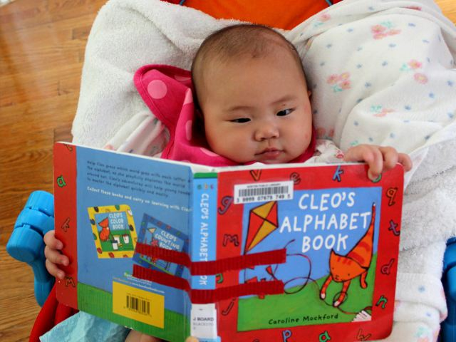 Cleo's Alphabet Book by Caroline Mockford