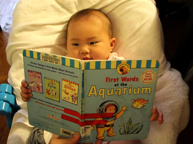 Curious George's First Words at the Aquarium by H.A. Rey