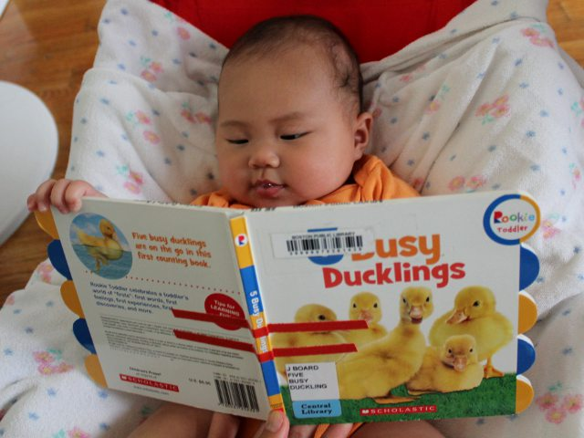 Five Busy Ducklings by Scholastic