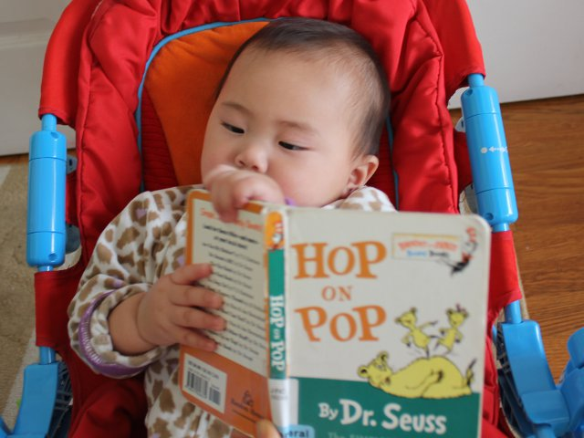 Hop on Pop by Dr Seuss