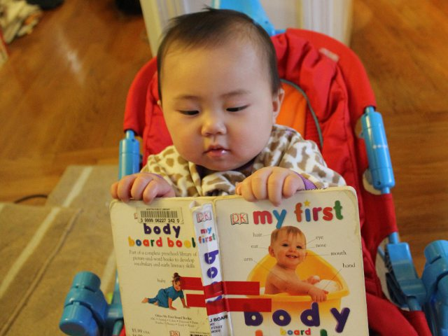 My First Body Board Book by DK Publishing