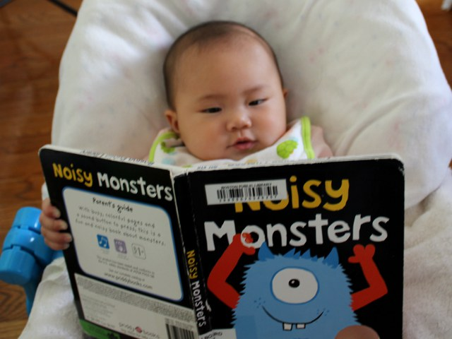 Noisy Monsters by Roger Priddy