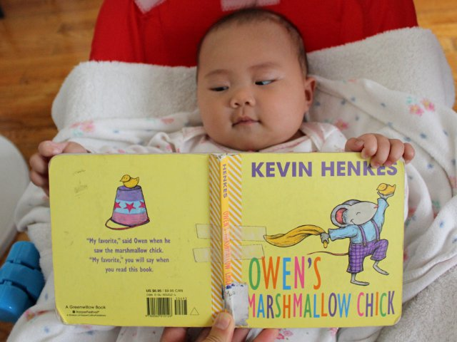 Owen's Marshmallow Chick by Kevin Henkes