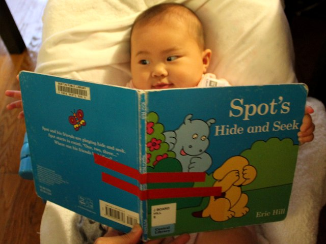Spot's Hide and Seek by Eric Hill