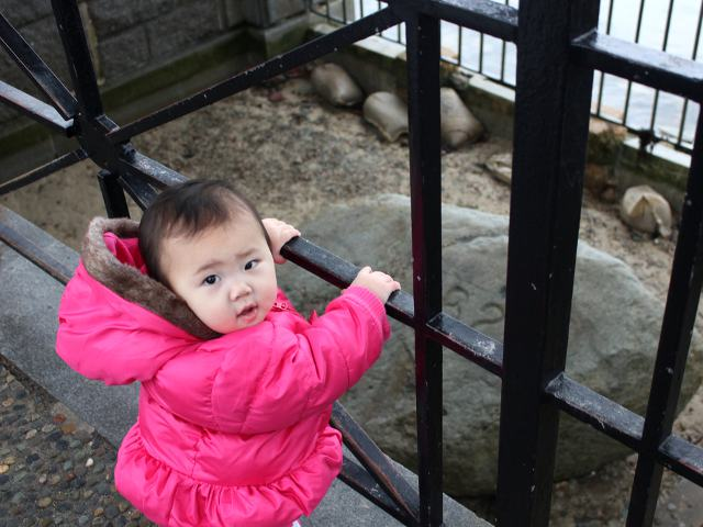 Taking Baby to Plymouth Rock
