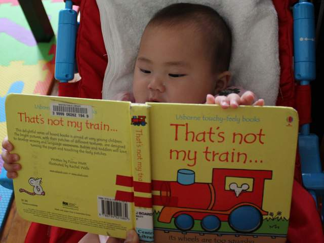 That's Not My Train by Fiona Watt
