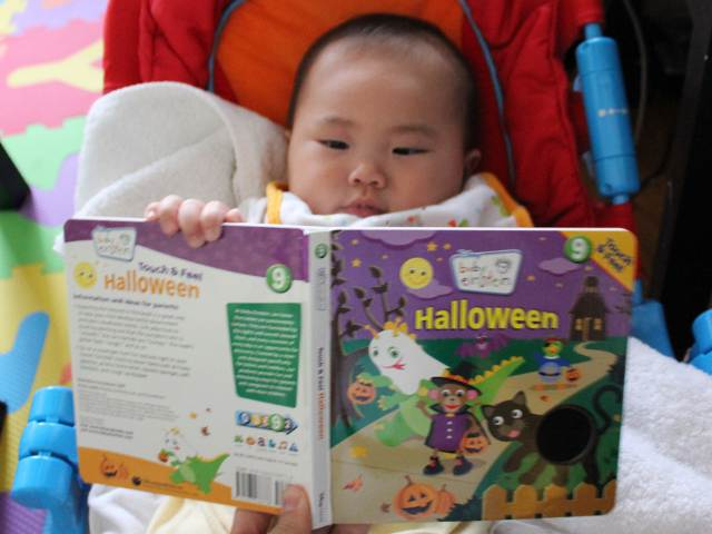 Touch and Feel Halloween by Baby Einstein